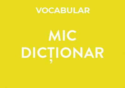 Mic dicționar