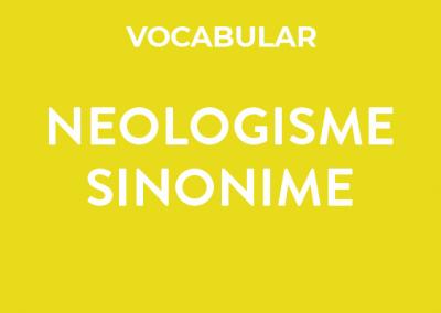 Neologisme – sinonime
